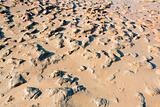mud beach of Dead sea