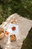 A picnic