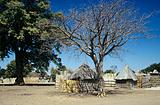 Huts in a namibian village
