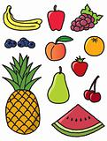 Eleven Common Fruits