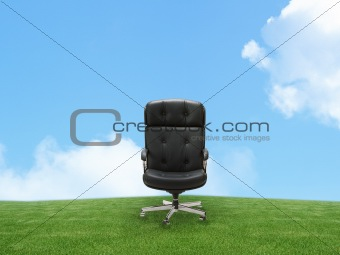 armchair on green land