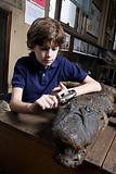 A boy examining a crocodile with a magnifying glass
