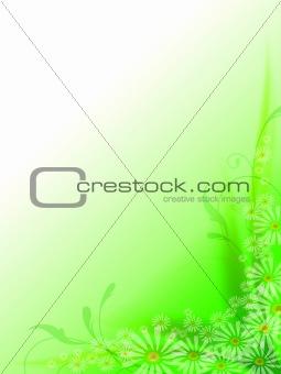 green spring frame