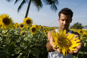 Man holding a sunflower