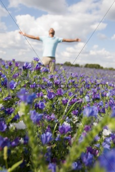 Man in a field of flowers