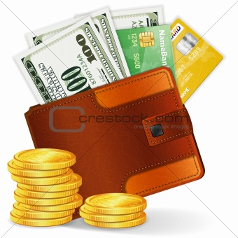 Purse with Dollars, Credit Cards and Coins