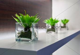 cube vases