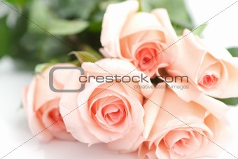 Bouquet Of Perfect Pink Roses