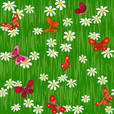 butterfly on camomile field seamless background pattern