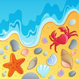Beach with shells and sea animals 1