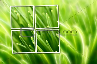 abstract composition with grass over green and yellow background