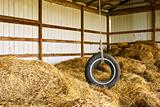 Tire Swing Barn