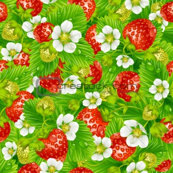 Vector strawberry seamless background