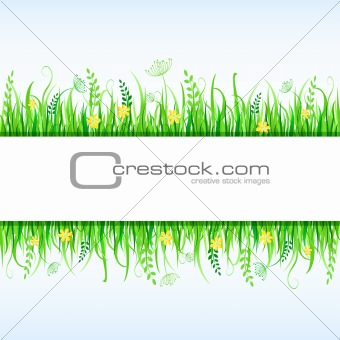 Beautiful Green Grass and Place for Text. Vector Frame
