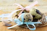Easter quail eggs on wooden background