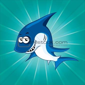 Funny shark