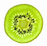 Slice of a fresh Kiwi / Super Macro /  back lit