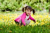 A little girl wearing a pink shirt, sitting on the dandelion fie