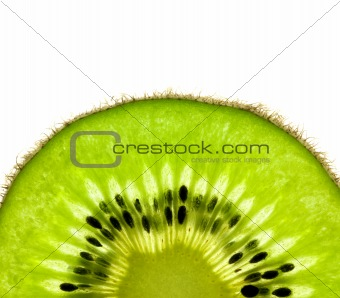 Slice of a fresh Kiwi / Super Macro /  back lit