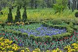 Flower lawn in spring garden