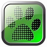 Animal footprint icon on green button
