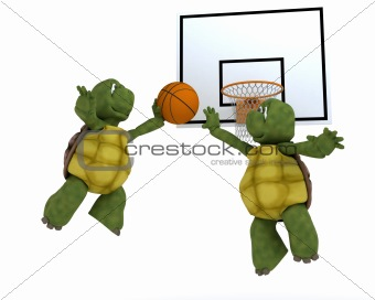 tortoises playing basket ball