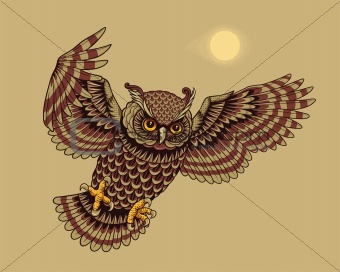 Flying Owl Bird
