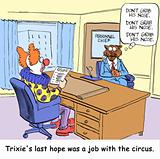 Circus job