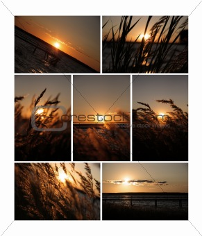 Sunset collection for your design