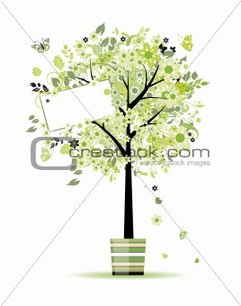 Beautiful spring tree in pot for your design