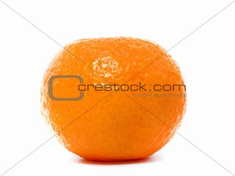 Fresh Clementine