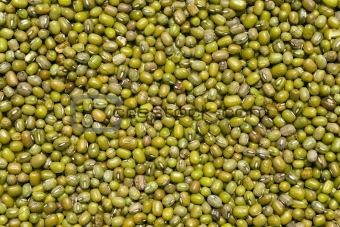 green mash