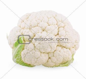 Head of cauliflower cabbage