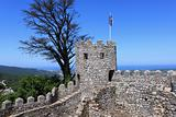 Castle of Sintra