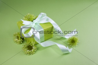 Gift box on green background