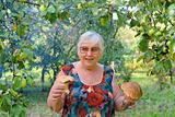 Woman with mushrooms in hands in apple garden