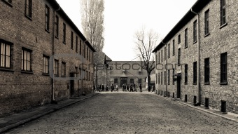 Auschwitz building blocks