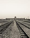 Rails to Auschwitz