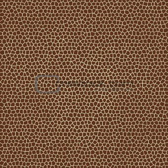 Safari+background+texture
