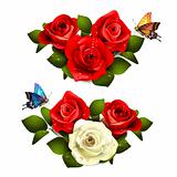 Roses with butterflies