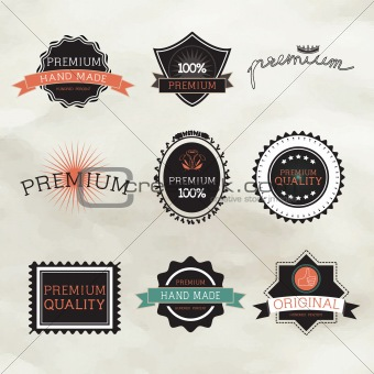 Vintage label Style with Nine Design Element , collection 16