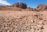 stone wildness in mountain valley in Petra,