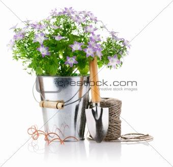 flowers in bucket with garden tools