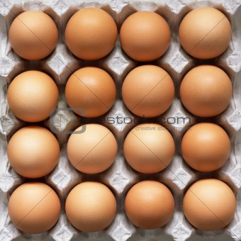 Many brown eggs in carton tray