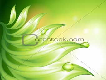 Abstract green background with leaves and water drops