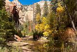 Oak Creek meanders through the canyon showing off fall colors ne