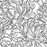 Seamless floral black and white tracery pattern with hand-drawn chrysanthemum flower isolated on white