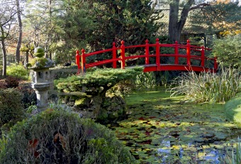 Bridge of Life in Kildandre Japanese Gardens