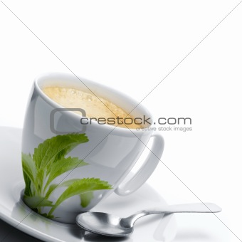 stevia rebaudiana leaves decor onto a cup