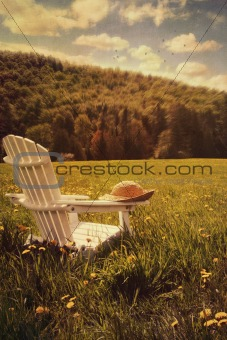 Adirondack chair in a field of tall grass